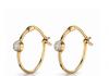 olive-hoop-earrings