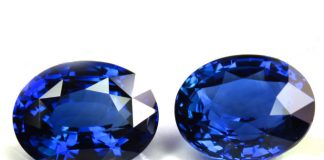 Coloured gems to dazzle at September Fair