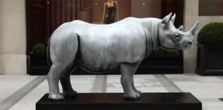 Forevermark Supports Tusk Rhino Trail to Boost Conservation Efforts for Rhino and Other Similar Species