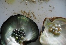 CIBJO report cites pearl trade's sustainability efforts
