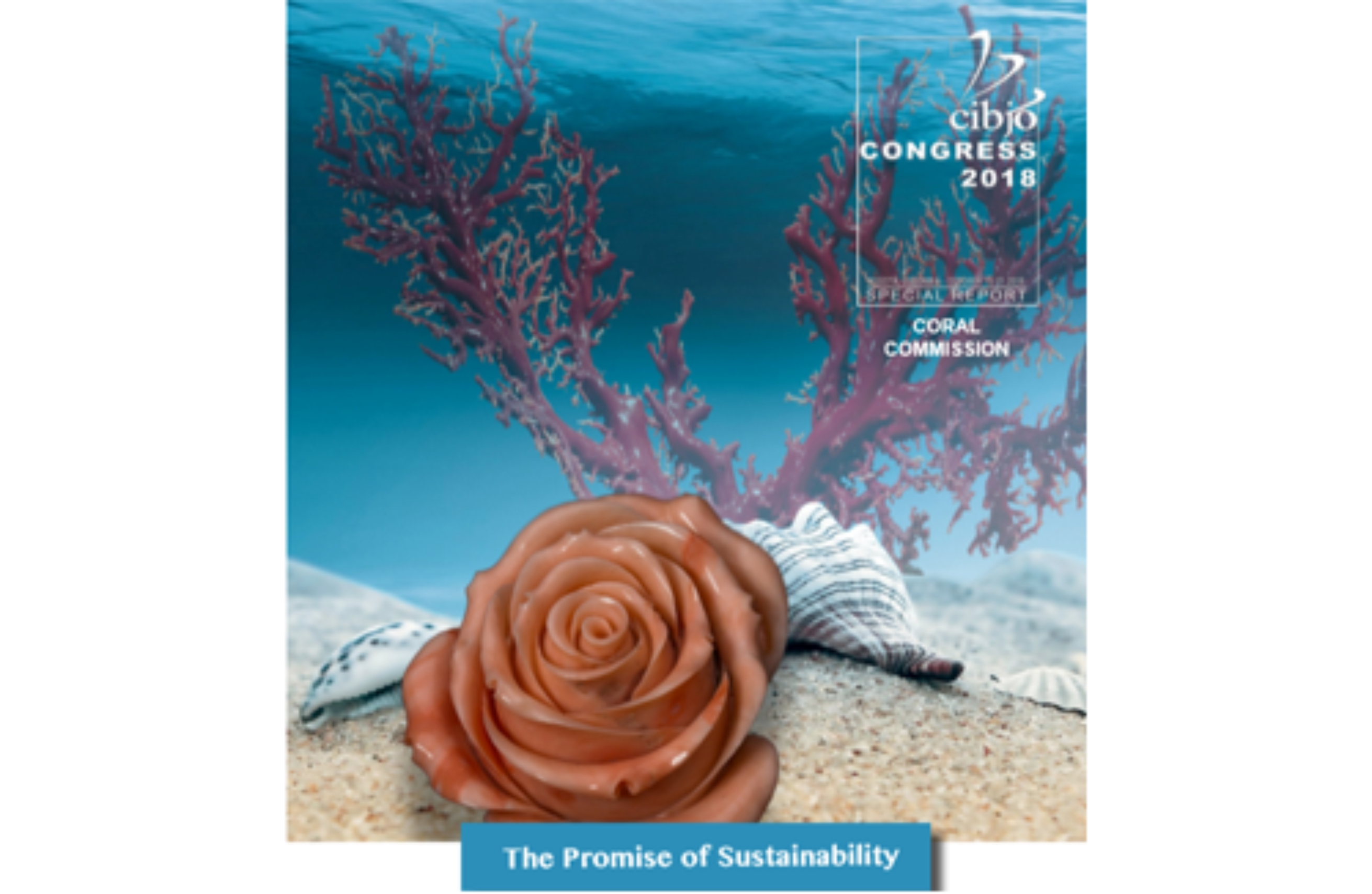 Coral Commission to Focus on Sustainability of Precious Coral Reefs, Online Education at CIBJO Congress