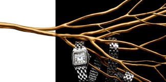 Jewellery, watches drive Richemont sales