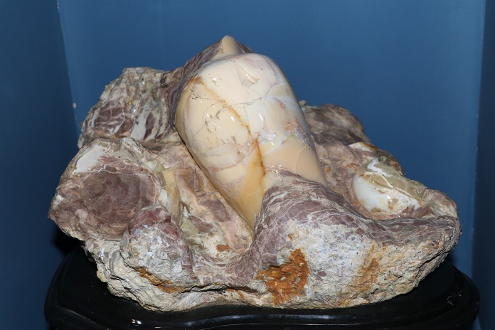 Opal with fossilised shell