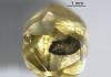 Rough Diamond Zimmi