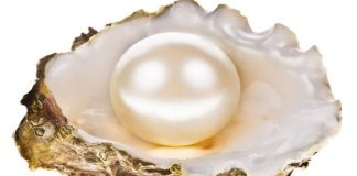 CPAA announces its 10th Annual International Pearl Design Competition