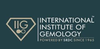 international institute of gemology