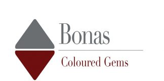 Logo bonas coloured gems